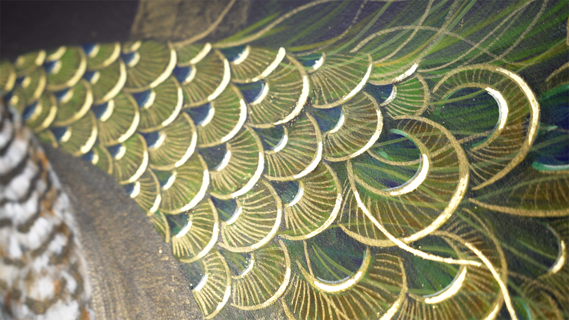 Peacock detail tail