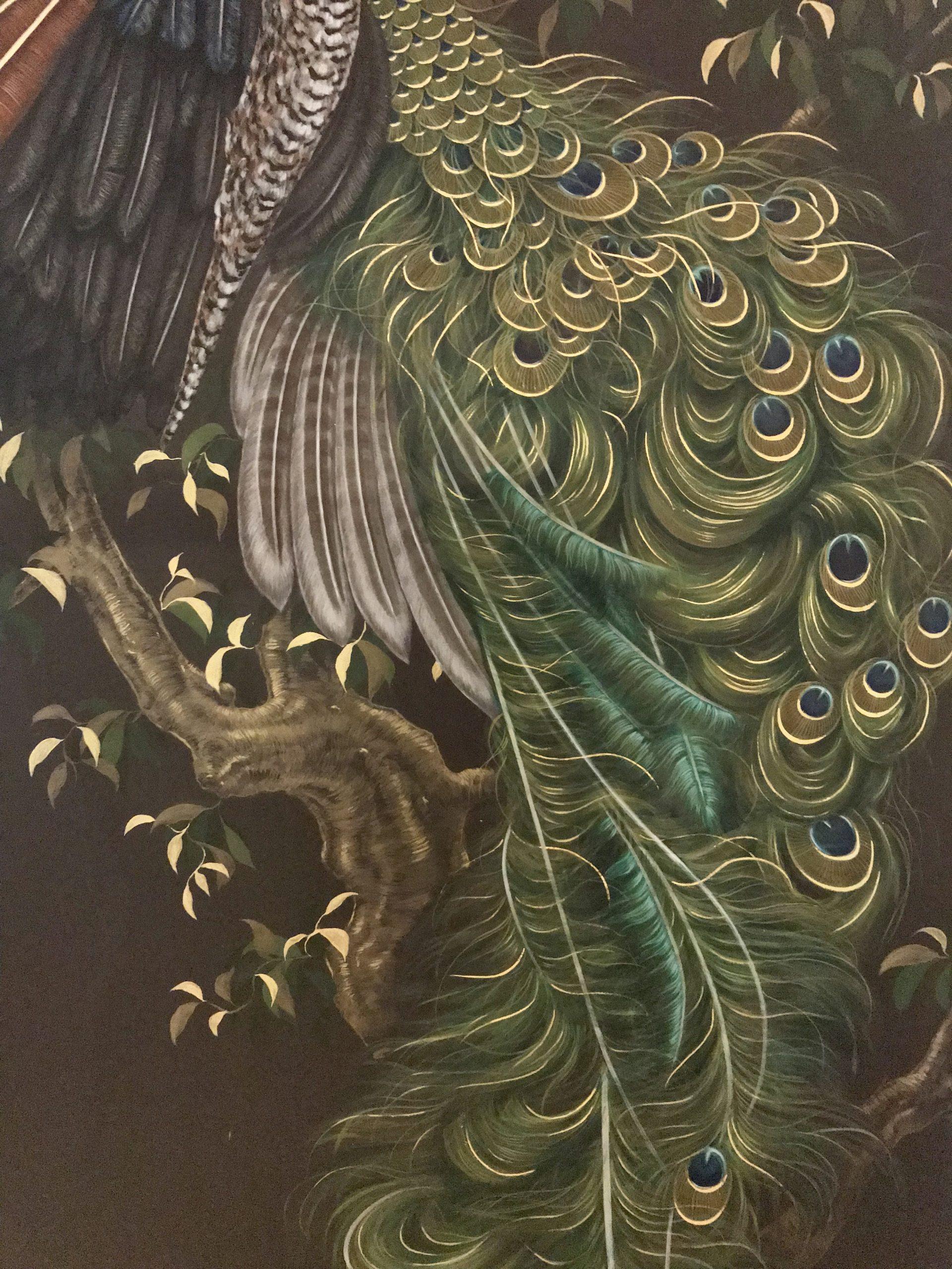 Tail Peacock